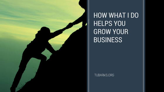 How What I Do Helps You Grow Your Business